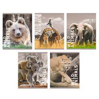 Тетрадь общая Канц-Эксмо Жизнь в дикой природе А5 48 листов в клетку на скрепке (обложка в ассортименте)