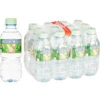 Вода минеральная Сенежская негазированная 0.33 л (12 штук в упаковке)