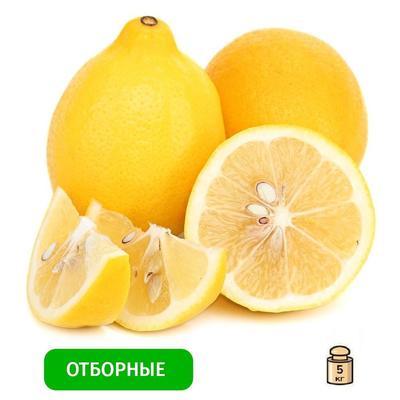 Лимон Узбекистан 5 кг