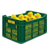 Ящик (лоток) фруктовыйизПНД500x300x264 ммзеленый
