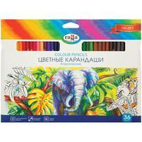 Карандаши цветные Гамма 36 цветов шестигранные