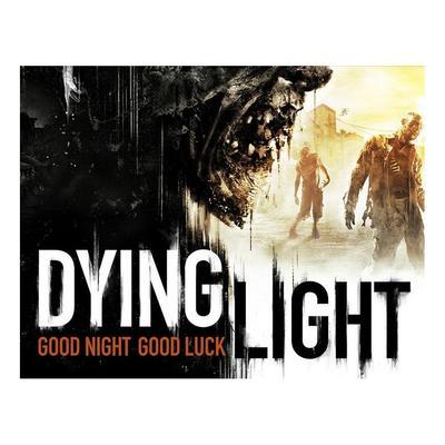 Игра на ПК Techland Dying Light TECH_4980