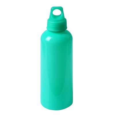 Бутылка для воды туристическая с карабином 650 мл