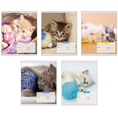 Тетрадь школьная Канц-Эксмо Игривые котята А5 12 листов в клетку (обложка в ассортименте)