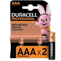 Батарейки Duracell Professional мизинчиковые ААA LR03 (2 штуки в упаковке)