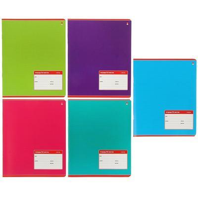 Тетрадь школьная Альт Классика А5 12 листов в крупную клетку (10 штук в упаковке, обложка в ассортименте)