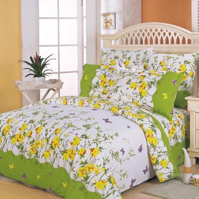 Постельное белье СайлиД A-63(1) (2-спальное с европростыней, 2 наволочки 70х70 см, поплин)
