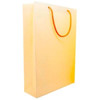 Пакет подарочный бумажный Geltex (24x35x8 см)