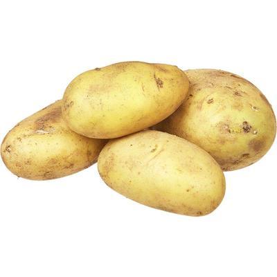 Картофель в сетке 25 кг