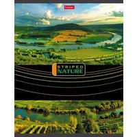 Тетрадь общая Hatber Полосатый мир А5 96 листов в линейку на скрепке (обложка в ассортименте)