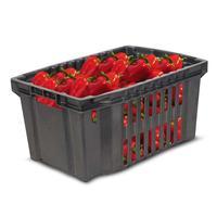 Ящик (лоток) овощной из ПНД 540х360х260 мм черный