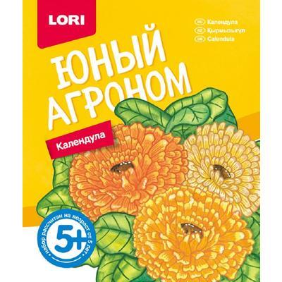 Набор для выращивания Lori Юный агроном Календула