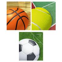Тетрадь общая Academy Style Мячи А5 80 листов в клетку на спирали (обложка в ассортименте)