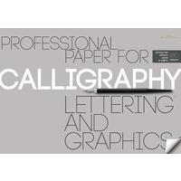 Бумага для каллиграфии Bruno Visconti А3 10 листов