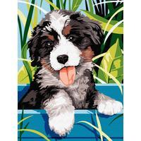 Картина по номерам Цветной Озорной щенок