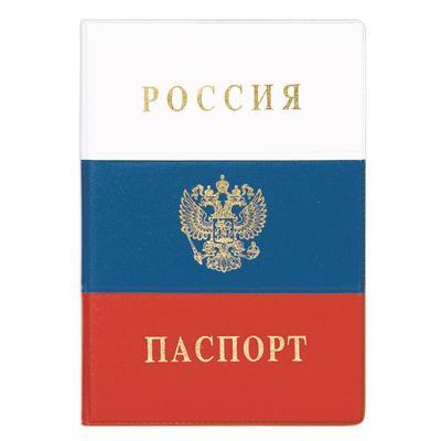 Обложка для паспорта ДПС Россия из ПВХ цветная (2203.Ф)