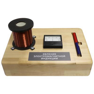 Стенд макет действующий Явление электромагнитной индукции (350x250x250 мм)