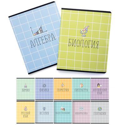Набор предметных тетрадей Be Smart Box  A5 48 листов в клетку и линейку (10 штук)