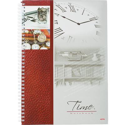 Бизнес-тетрадь Время-деньги A4 120 листов разноцветная в клетку на спирали (210x300 мм)