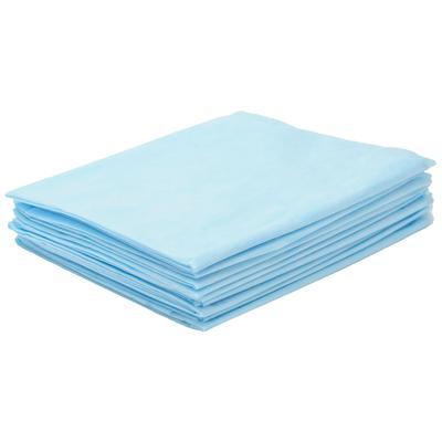 Простыня одноразовая Чистовье Стандарт нестерильная 100x80 см СМС (голубая, плотность 12 г, 50 штук в упаковке)