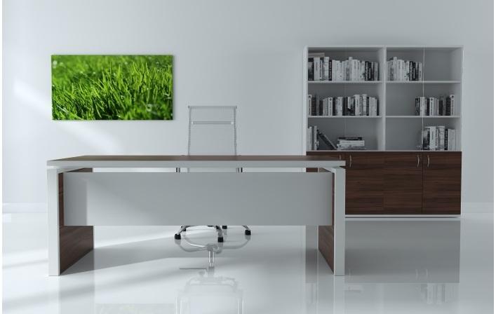 Мебель для руководителя Steel Evo