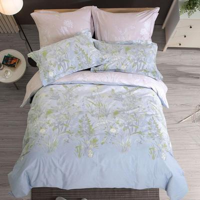 Постельное белье СайлиД B-195 (2-спальное с европростыней, 2 наволочки 50х70 см, 2 наволочки 70х70 см, сатин)