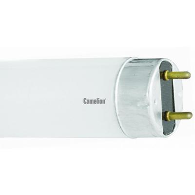 Лампа люминесцентная Camelion FT8 10W/54,6500K,10Вт,L345,5мм 3006