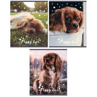 Тетрадь общая Academy Style Милые щенки А5 80 листов в линейку на спирали (обложка в ассортименте)