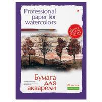 Папка для рисования акварелью Альт А3 20 листов в ассортименте