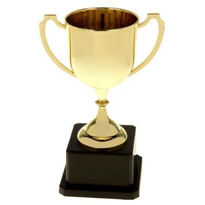 Кубок классический (высота 17 см)