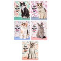 Тетрадь общая Проф-пресс Жизнь с котом А5 48 листов в линейку на скрепке (обложка в ассортименте)