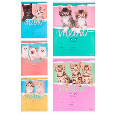 Тетрадь школьная Проф-пресс Друзья-котята-2 А5 12 листов в линейку (обложка в ассортименте)