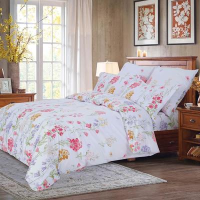 Постельное белье СайлиД A-189 (2-спальное с европростыней, 2 наволочки 70х70 см, поплин)