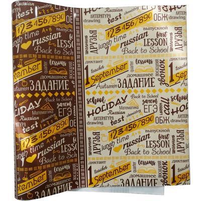 Обложка для дневника и тетрадей ТД-Color (208x400 мм, 150 мкм)