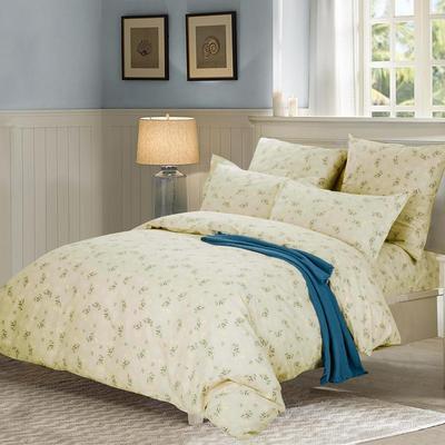 Постельное белье СайлиД A-181 (2-спальное с европростыней, 2 наволочки 70х70 см, поплин)
