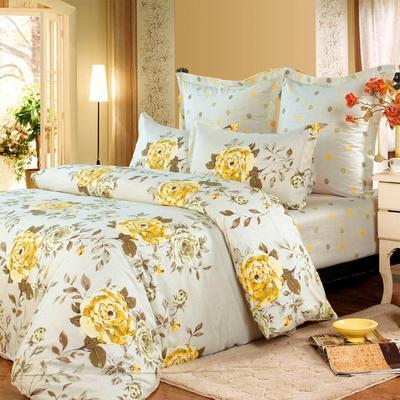 Постельное белье СайлиД B-119 (2-спальное с европростыней, 2 наволочки 50х70 см, 2 наволочки 70х70 см, сатин)
