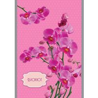 Блокнот Апплика Орхидеи на розовом А5 32 листа в клетку на скрепке