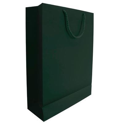 Пакет подарочный бумажный Plike зеленый (240х350х80мм)
