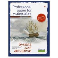 Папка для рисования акварелью Альт А4 20 листов в ассортименте
