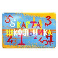 Чехол для карт ДПС Школьник из ПВХ разноцветный (2802.ЯК.ШК)
