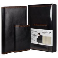 Набор недатированный Феникс+ черный (ежедневник, обложка для паспорта)