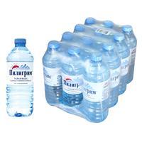 Вода минеральная Пилигрим негазированная 0.5 л (12 штук в упаковке)