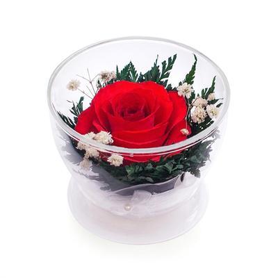 Композиция из красной розы Natural Flower
