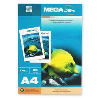 Фотобумага для цветной струйной печати ProMega jet двухсторонняя (матовая, А4, 170 г/кв.м, 50 листов)