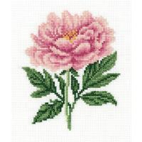 Набор для вышивания Klart Садовый пион