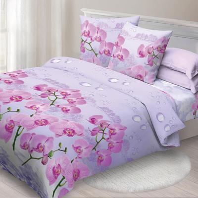 Постельное белье Спал Спалыч Орхидея (2-спальное с европростыней, 2 наволочки 70х70 см, бязь)
